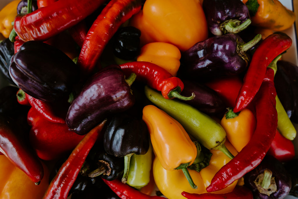 A close up image of an assortment of hot peppers, sweet bell peppers, and other varieties.