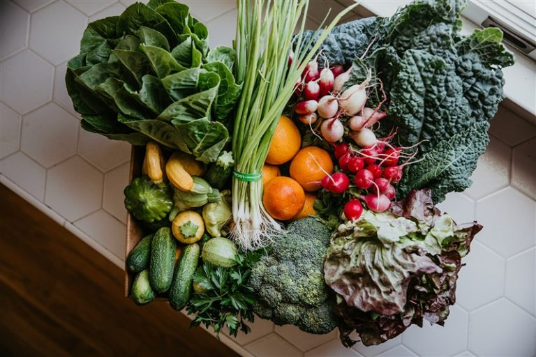 A Harvest Box on a countertop with a diverse selection of organic produce.