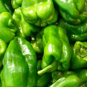 Green Bell Peppers