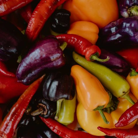 Peppers of many varieties and colors lay among one another.