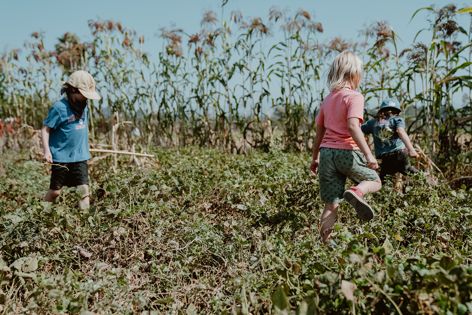 Kids playing in field