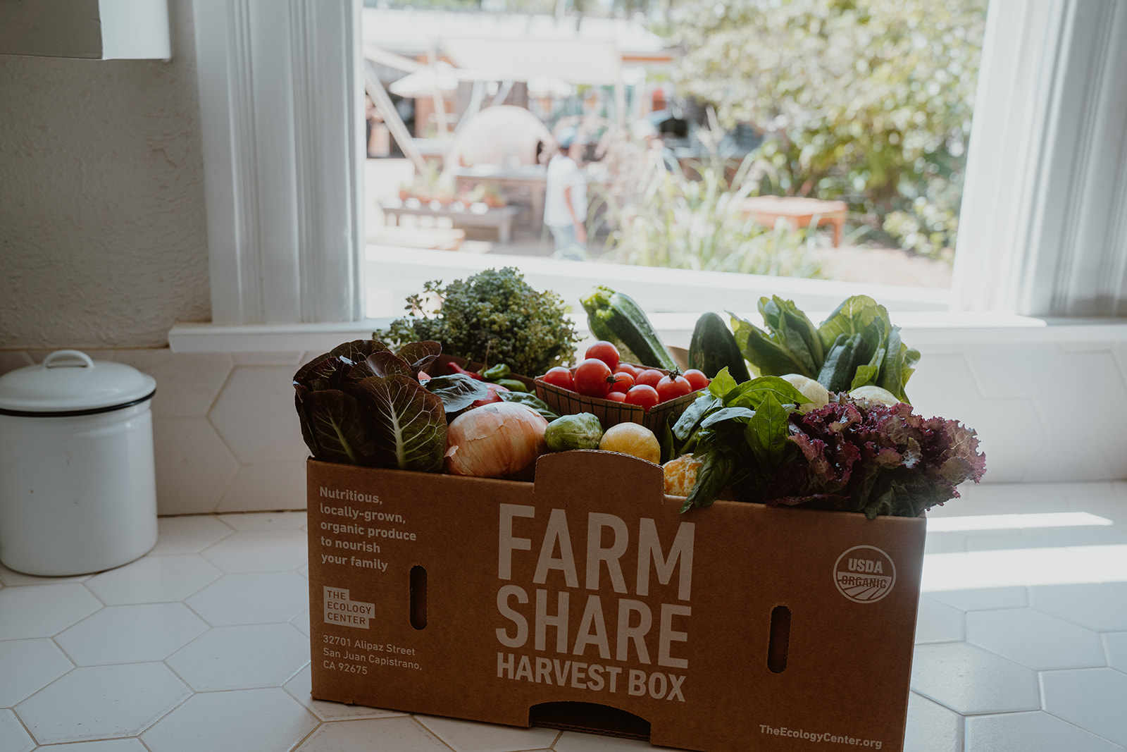 Harvest box filled with organic produce by open window.