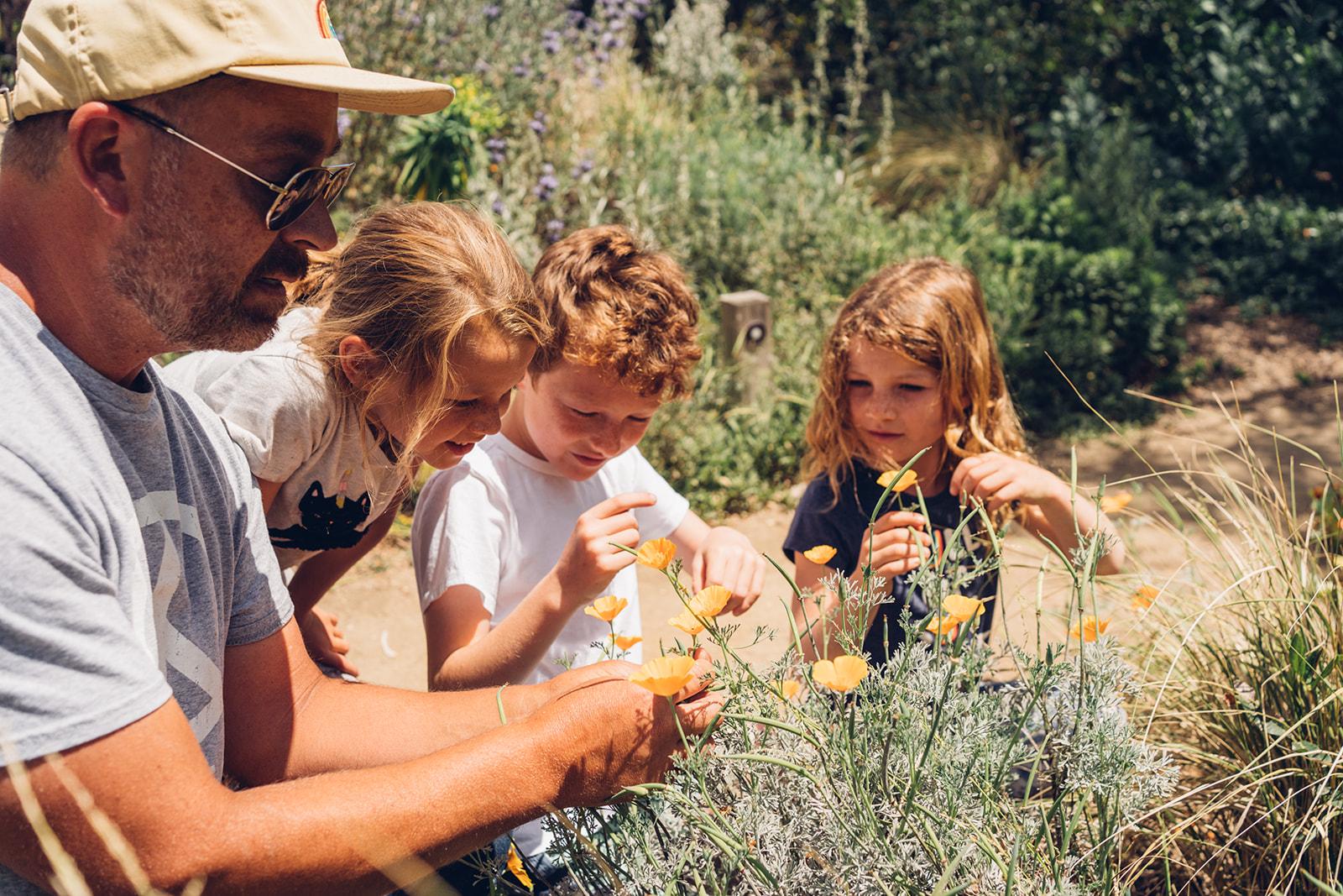 Teacher showing children a native plant.