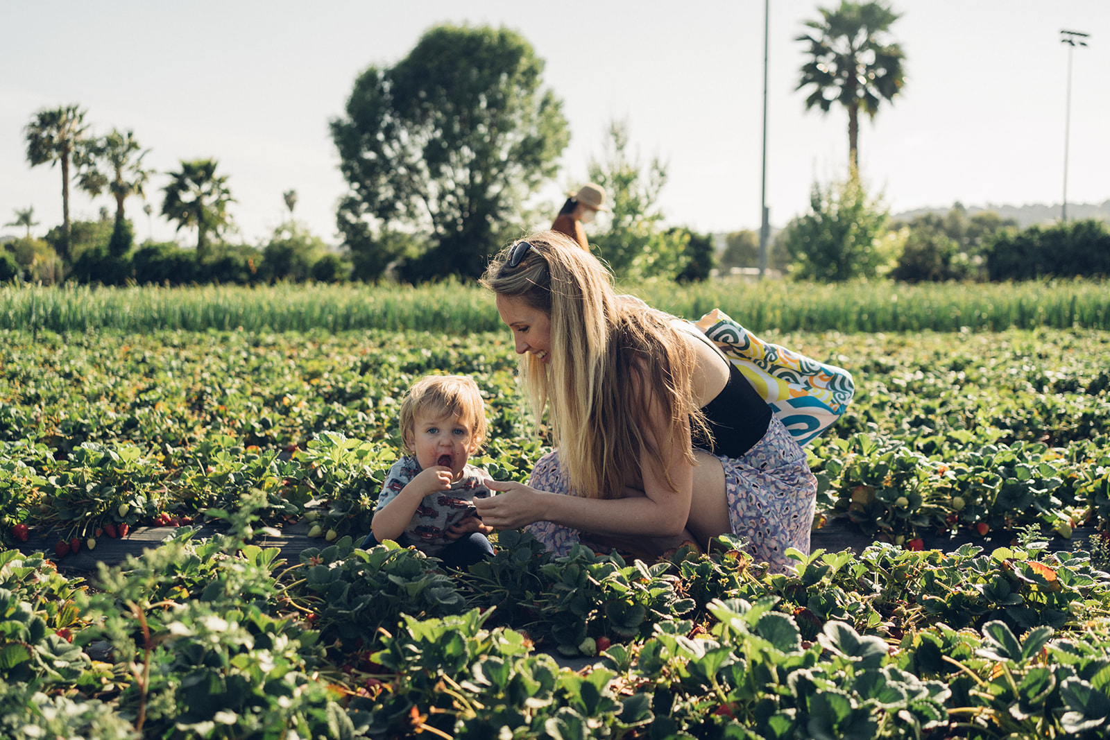 Mother and child sitting in the middle of strawberry field.