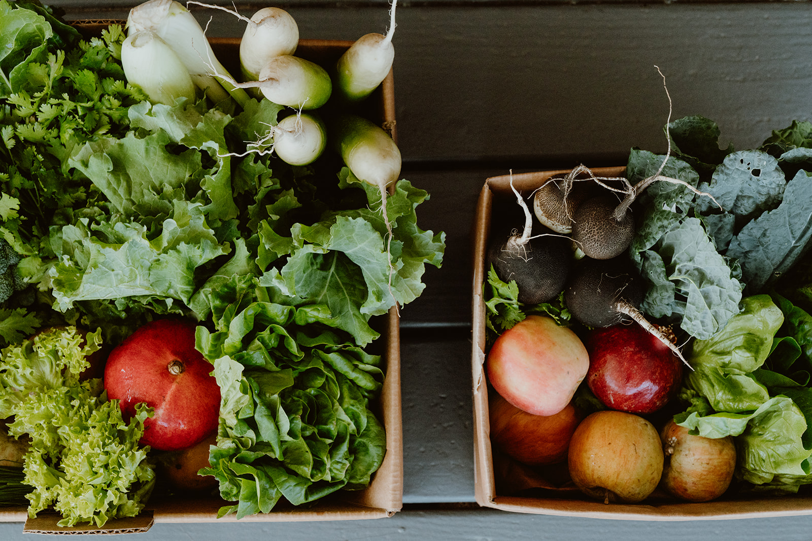 Top down shot of Harvest Boxes filled with fresh produce.