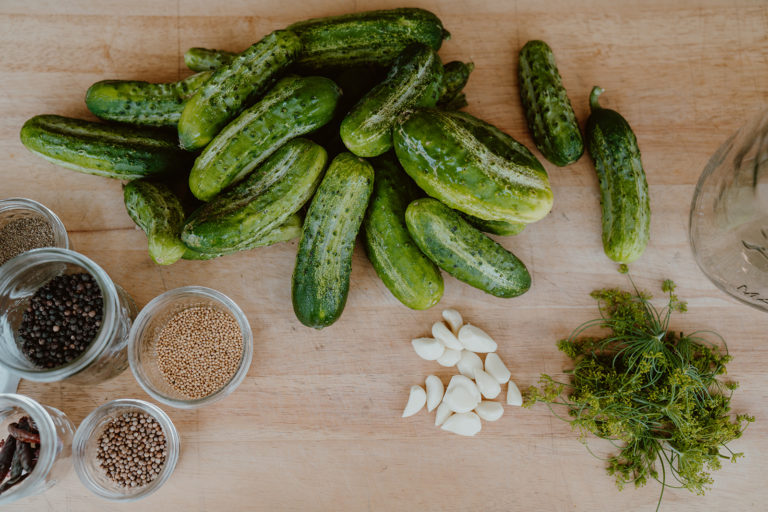 Pickling cucumbers along with spices and fresh dill displayed on cutting board.
