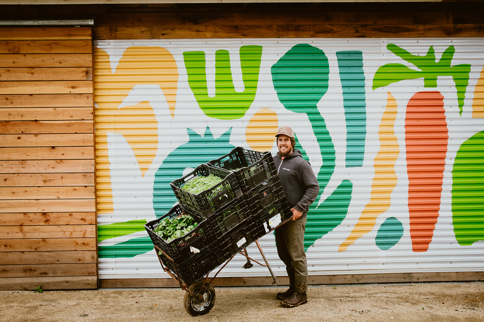 Farmer holding crates of harvested veggies.