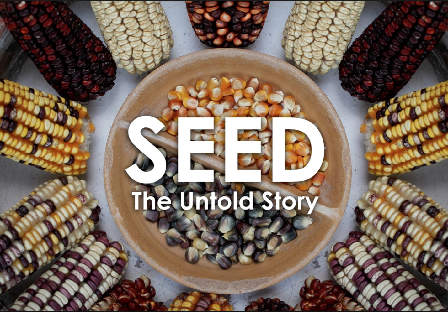 Image of the movie Seed: The Untold Story