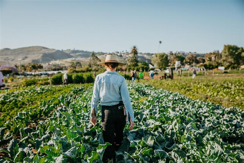 Woman walking through farm field.