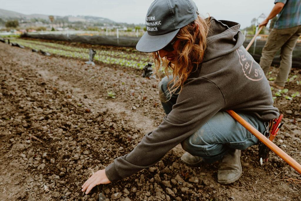 Farmer tending to soil.